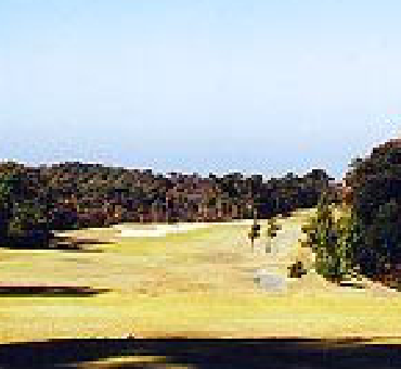 Hole 12/King Course