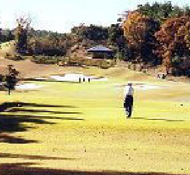 Hole 14/King Course