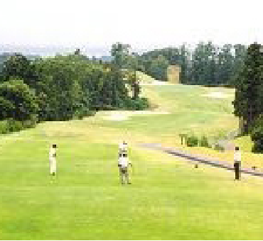 Hole 8/King Course